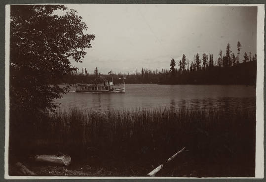 'L.T. Haas' steamboat on Lake Washington, ca. 1905
